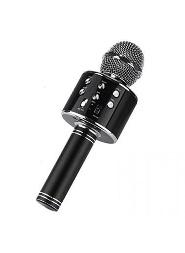 Platoon PL-2462 Bluetooth Sd Aux Kablosuz Karaoke Mikrofon Siyah